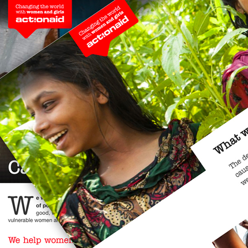 Pic of ActionAid website montage